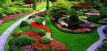 Cursos Americanos Jardineria Profesional - Foto 2