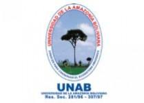 Universidad de la Amazonía Boliviana - UNAB