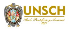 Universidad Nacional de San Cristóbal de Huamanga - UNSCH